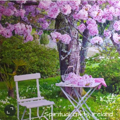 Blossom Tree Inspirational Greeting Card Blank