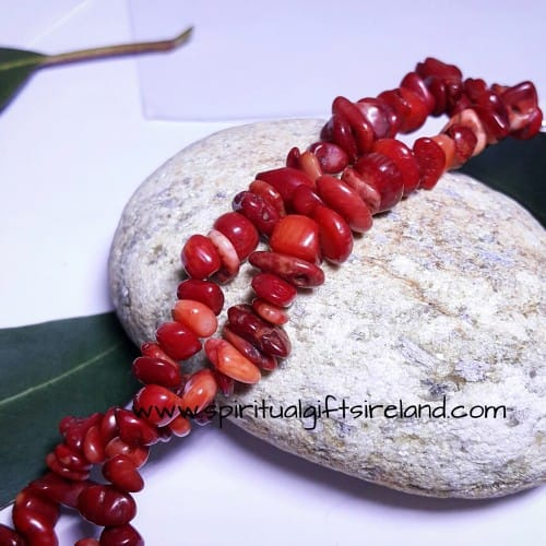 Red Coral Root Chakra Bracelet