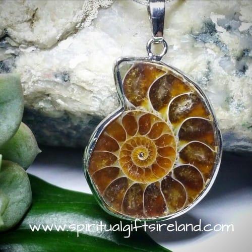 Ammonite Fossil Pendant Necklace
