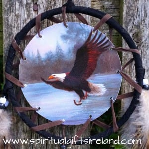 Eagle Spirit Animal Black Feather Dreamcatcher